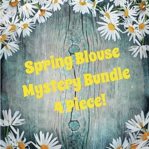 Spring Tops Mystery Bundle 4 Piece